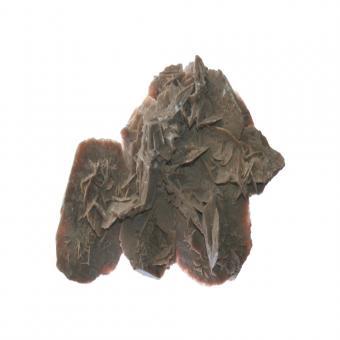 Sandrose 1 Stück mit 1294 g.